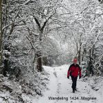 Wandeling 1434. Magnée