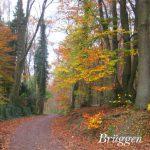 Brüggen, wandeling 457, 458, 467, 703, 793